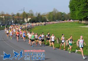 maratonina dogi