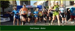 SOAVE_BOLCA