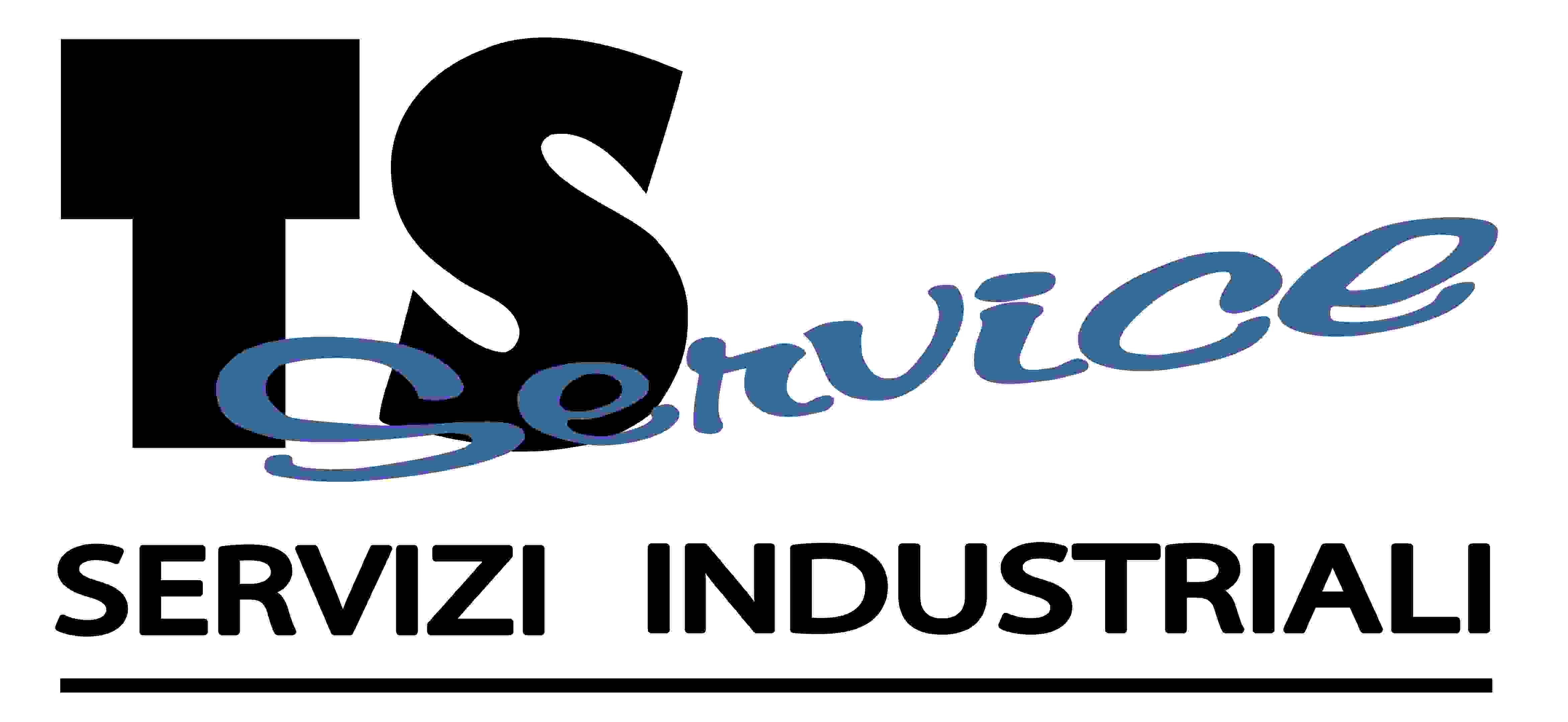 logo-ts-service-corto