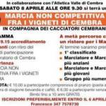 MARCIA NON COMPET. VIGNETI CEMBRA @ Cembra | Trentino-Alto Adige | Italia
