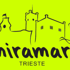 Trieste 21k, la Bavisela. Domenica 2 maggio 2021. GRANDISSIMI atletazzi anche lì🤩🧡🖤